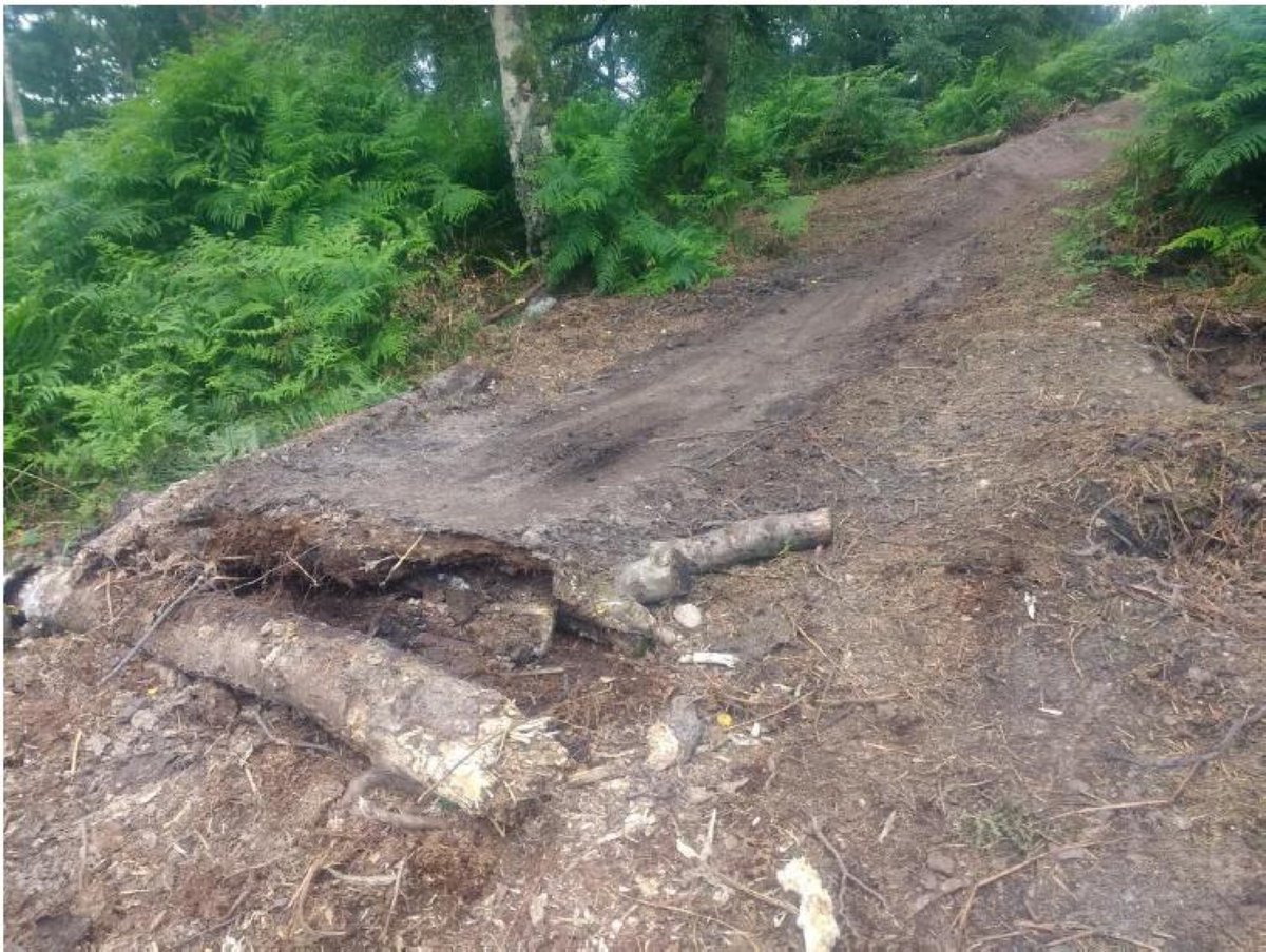Cannock Chase has protected SSSI sites and digging to create MTB jumps is criminal damage prosecutable under the Wildlife & Countryside Act 1981. Penalties for intentionally damaging such sites include fines of up to £20K. Please respect this beauty spot 🌳 https://t.co/Yp4BMpc9qo