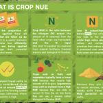 Image for the Tweet beginning: Using #fertilizer best management practices