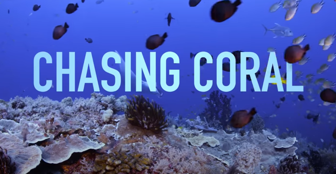 Chasing Coral the movie