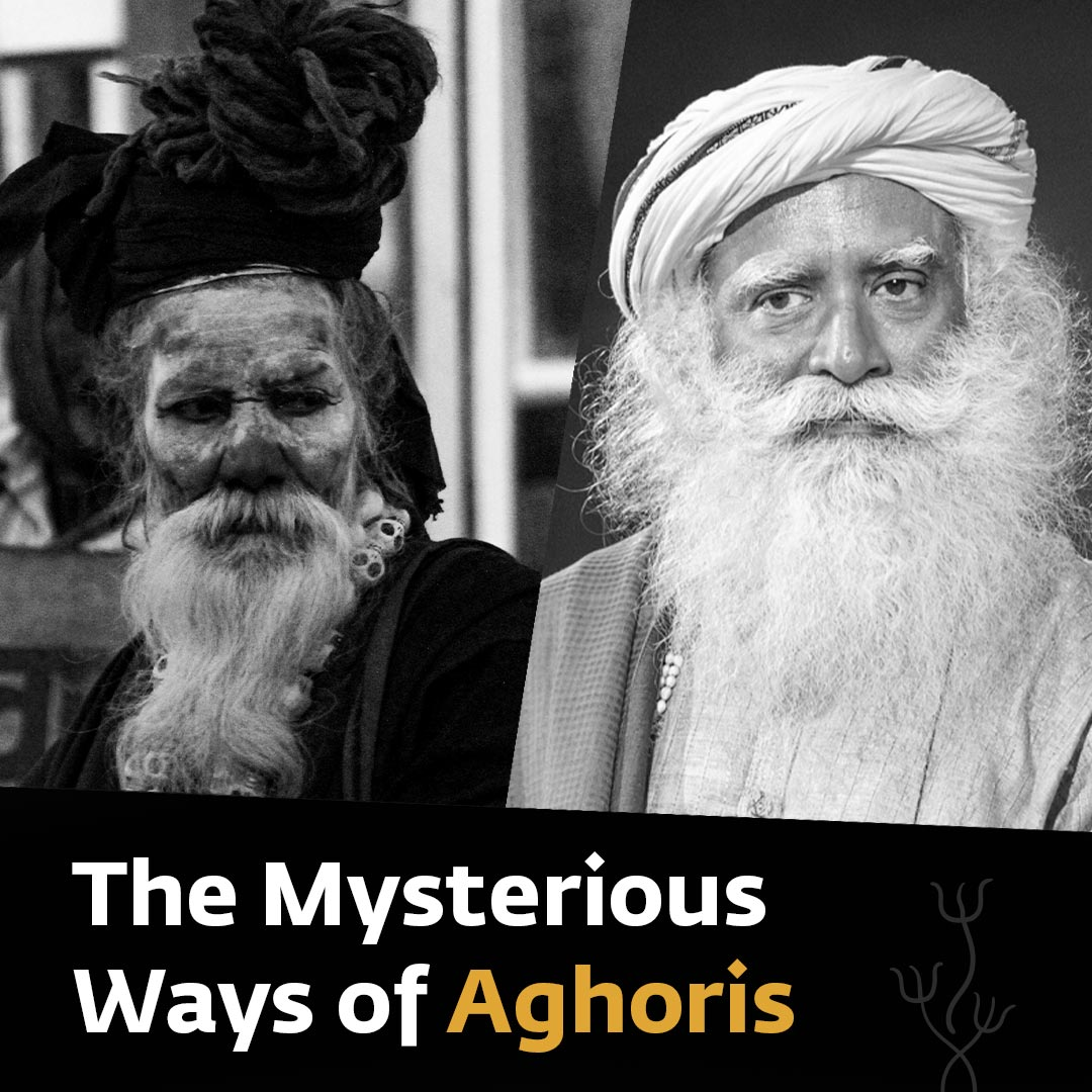 "Aghori"" means beyond terrible. An aghori wants to befriend what is abhorrent because they want to take away their likes and dislikes. Likes and dislikes are the basis of your limitations. Dropping likes and dislikes is the means of embracing the universe."