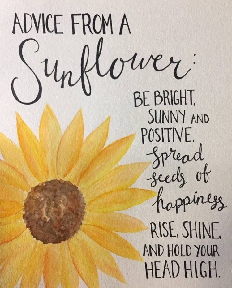 #advicefromasunflower #brighterdaysahead #🌻#shareafairsmile #walworthcountyfairgrounds #elkhornwi https://t.co/s87a6XQvw5