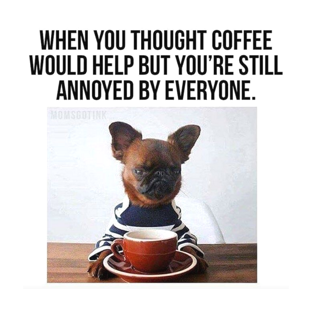 Those Wednesday vibes ... #humpday Tag your friends that feel your pain!! #coffee #coffeemust #funnyfaces #coffeefun #coffeememes #coffeememe #LOL #word #leanercreamer #wednesday #vibes #coffeevibes #coffeeloverspic.twitter.com/7kyEpO34nx