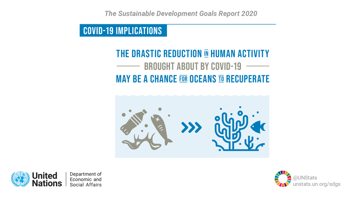 The drastic reduction in human activity brought about by #COVID19 may be a chance for oceans to recuperate. Learn more about coronavirus implications in the #SDGreport 2020: unstats.un.org/sdgs/report/20… #GlobalGoals