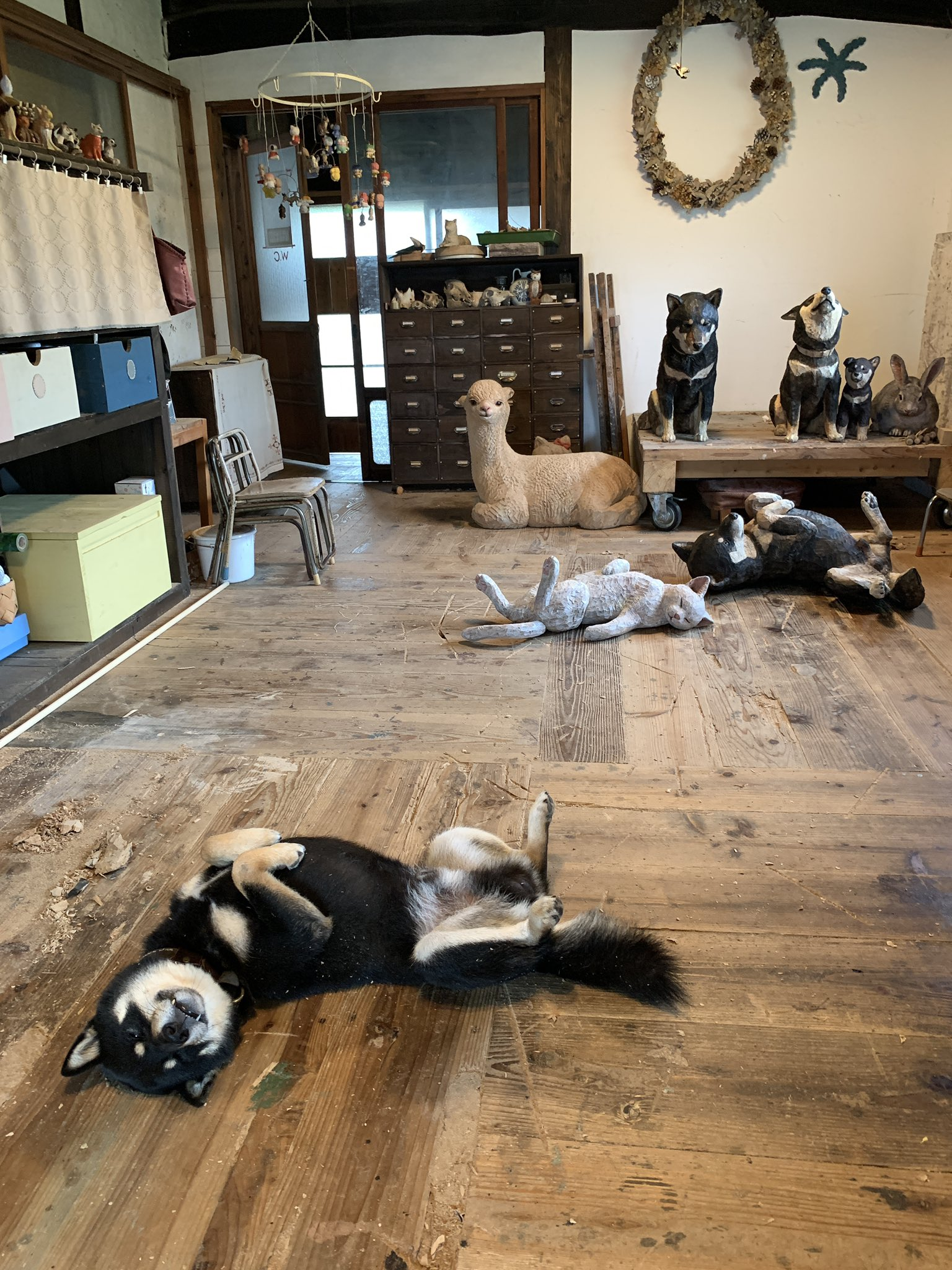部屋に溢れた木彫りの動物彫刻!作品にまぎれる作家の愛犬