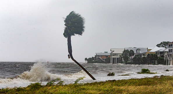 tropical-storm-isaias-aims-for-florida-amid-pandemic--nbc-nightly-news Photo