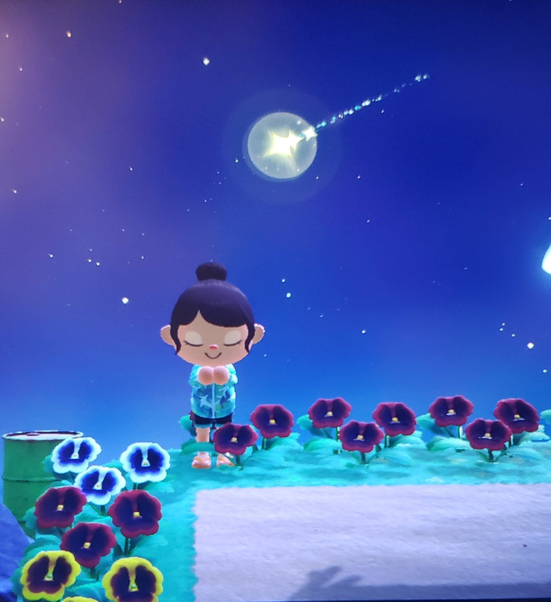 When you wish upon a star 🌟 #acnh #animalcrossingnewhorizonsgame