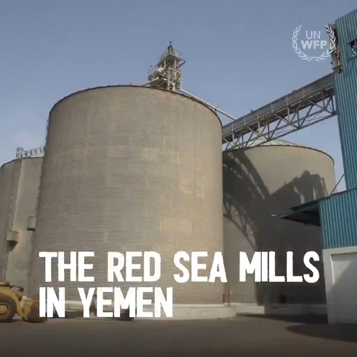 """The Red Sea Mills in many ways became a symbol of the many challenges we face as we work tirelessly in #Yemen to get food to those who so desperately need it."" Last week, the last grain was transported away from the frontline mills.➡️bit.ly/2P576mW #YemenCrisis"