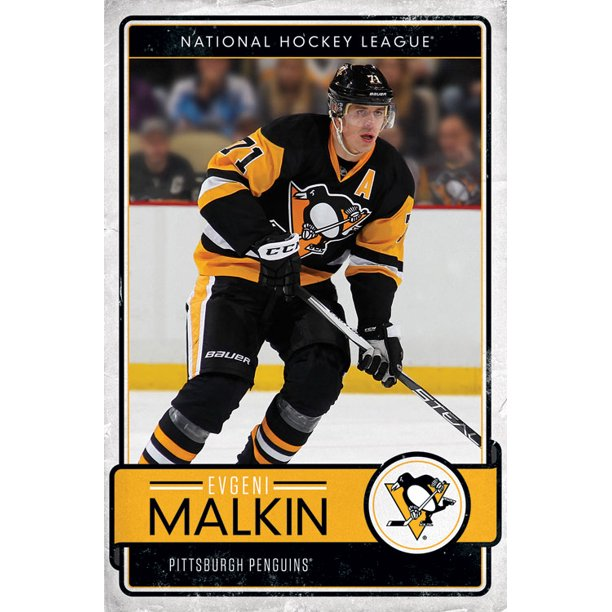 "July 31:Happy 34th birthday to professional ice hockey centre,Evgeni Malkin (""Pittsburgh Penguins\"")"