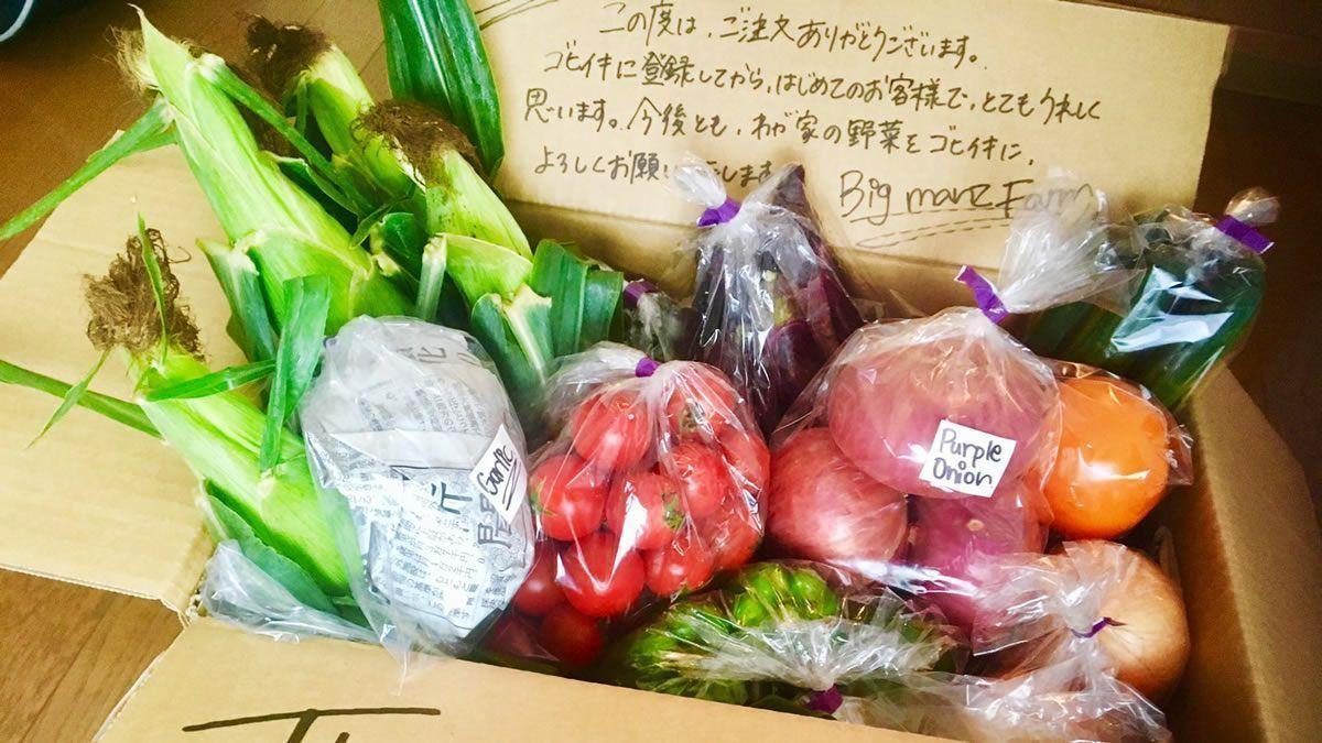 WEBサービス「ゴヒイキ」は、金額だけ決めてリクエストを出すと旬の野菜&果物が届く通販サイト。箱の中身は農家さんが選んだ、今が旬の美味しいものだけ。ワクワクするような食材との出会いが楽しめます→