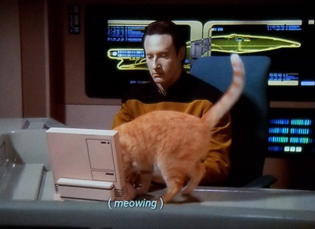 Star Trek Minus Context (@NoContextTrek) on Twitter photo 30/07/2020 14:15:14