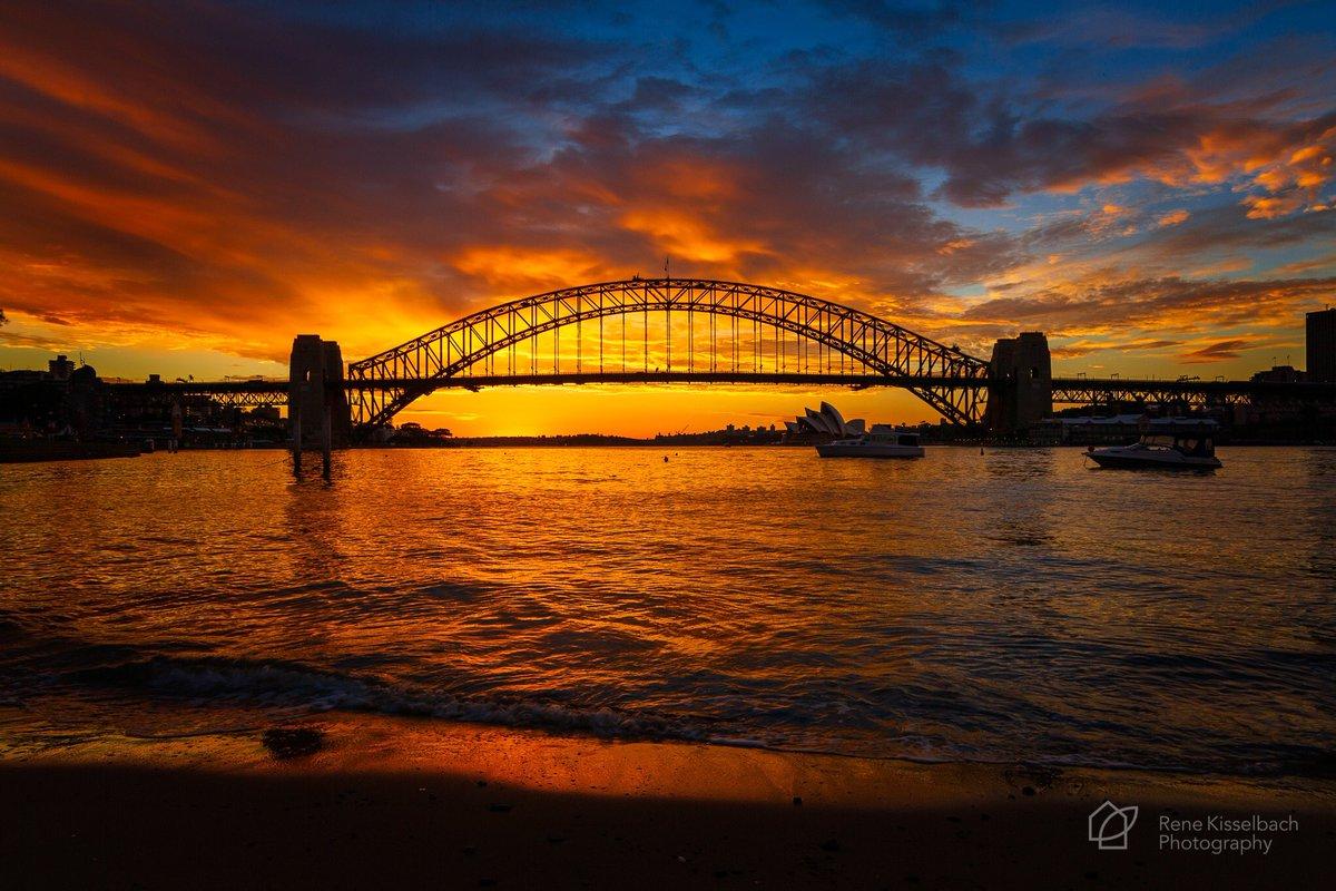 Bluespoint Reserve #bluespointreserve #northsydney #sydney #ilovesydney #sydneyharbour #sydneyharbourbridge #nsw #visitnsw #australia #seeaustralia #sunrise #bridge #canon #canonaustralia #canon5dmkiii #on1picspic.twitter.com/WF8hiijgT1