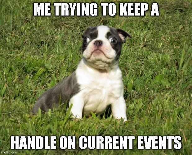 #bostonterriers #bostonterrier #bostonterriersofinstagram #bostonterrierlove #bostonterriercult #bostonterrierlife #bostonterriersforever #dogsofinstagram #bostonterriernation #dog #dogs #bostonterriergram #bostonterriersrule #bostonterriersofig #bostonterrierpuppypic.twitter.com/VHOcp8OoJ0