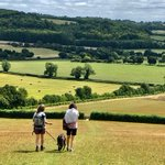 Image for the Tweet beginning: Delighted our new #Chilterns Social