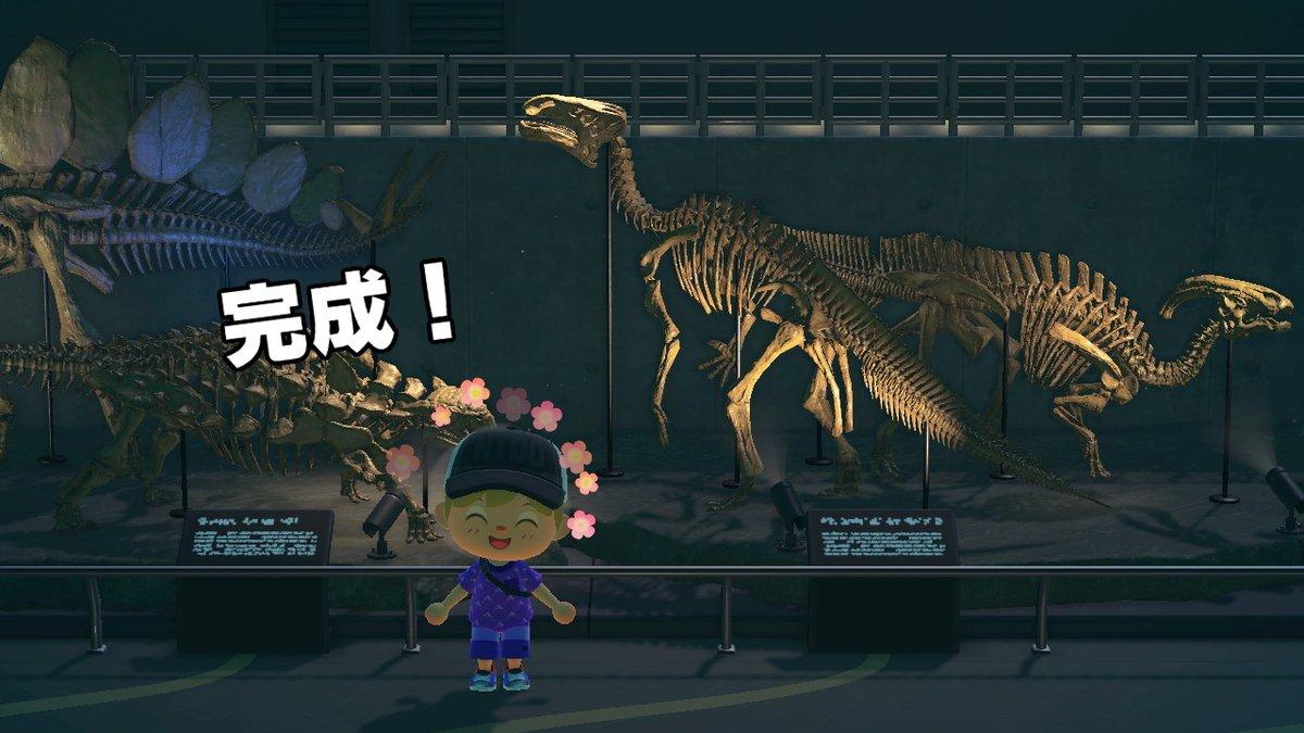 森 化石 コンプ あつ 【あつ森】化石コンプリート!恐竜博物館の全容紹介