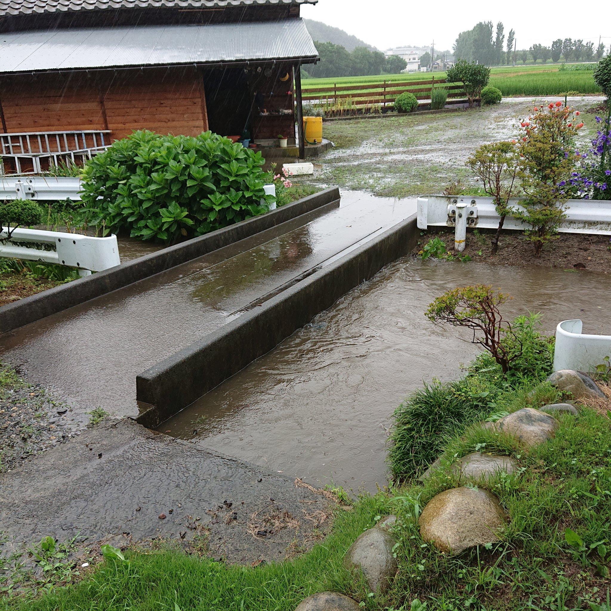 画像,川が溢れそう‼️ #新発田市 #新発田川 https://t.co/Bibo2GVsJB。