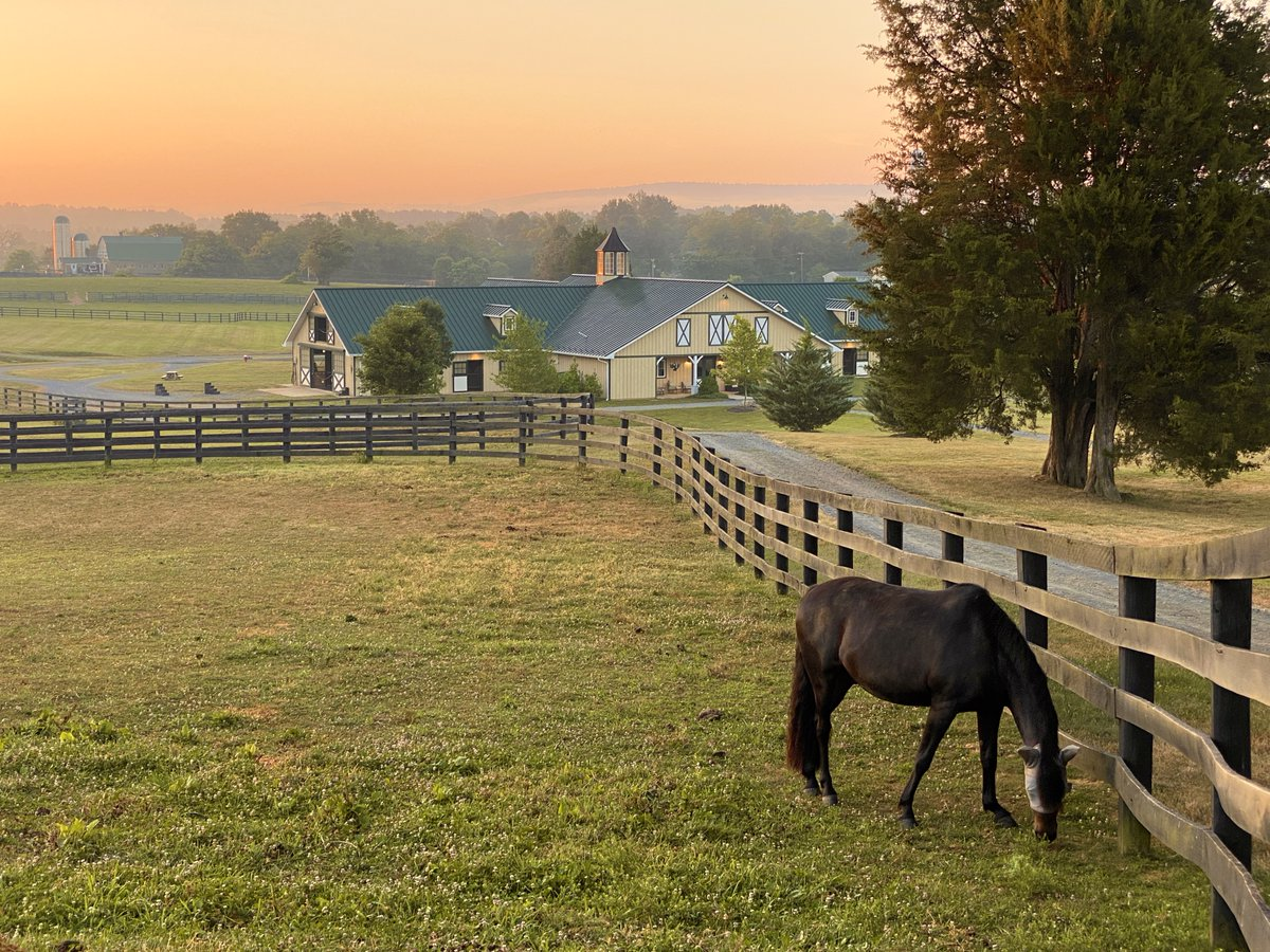 There is nothing quite like walking the grounds to experience #Middleburg's beauty at dawn. #MiddleburgVA #LoveLoudoun #LoveVA #horsecountry https://t.co/zP3u9avstb