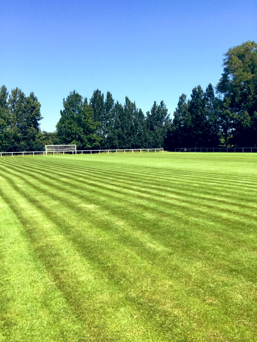 Pitch is looking set for the first games, a bit of rain would be lovely though @ThorneCollFC #NonLeague #Thorne #ClubThorne #grassrootsfootball #NewEra https://t.co/tYzxSqfyEr