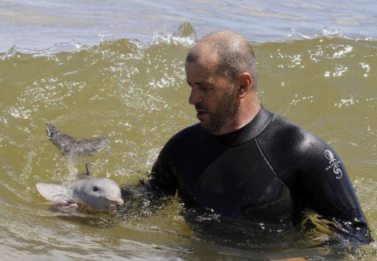 人の手で育てられているイルカの赤ちゃん!表情豊かで可愛すぎる