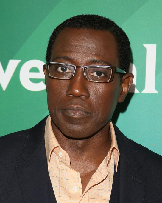Happy 58th Birthday to actor and producer, Wesley Snipes!