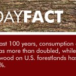 Image for the Tweet beginning: U.S. Forests contain 1 trillion