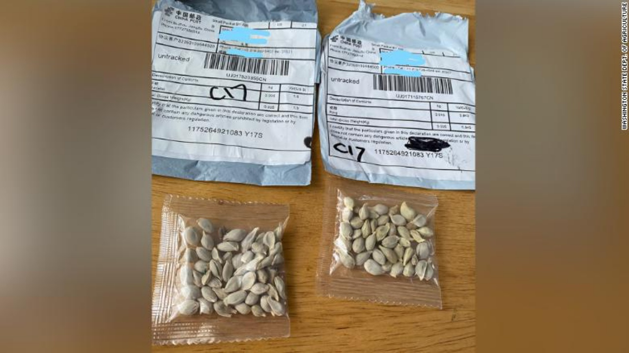 warnings-about-unsolicited-packages-of-seeds-issued-in-all-50-states Photo