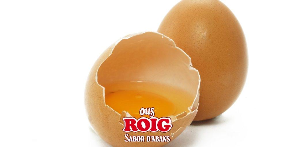 A l'hora d'analitzar la qualitat de l'ou els nostres experts, entre altres factors, tenen en compte l'albumen (alçada i viscositat d'aquest), mida de la càmera d'aire i la forma i el color del rovell.  #eggs #huevos #qualitat #agosto #alimentacion #terresdelebre #igersspain https://t.co/YIYCsrVXAa