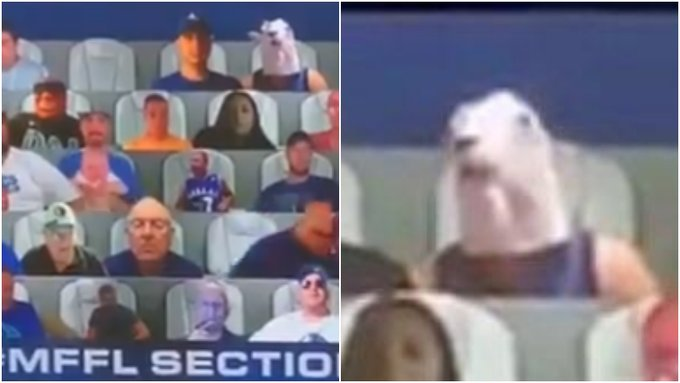 NBA虛擬看台再引吐槽!記者:為什麼觀眾的腦袋都不一樣大?我要被搞瘋了!