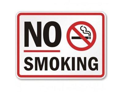 Демонстрация табачных изделий в местах продажи болгарские сигареты оптом купить в спб