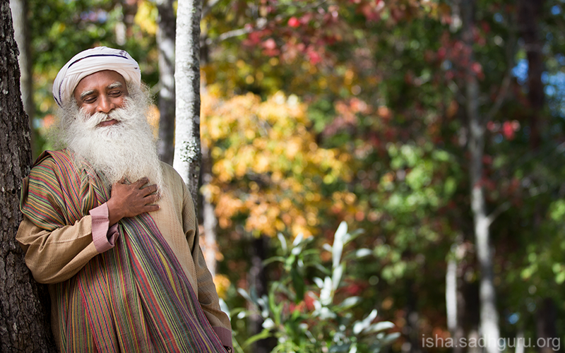 If you are established in Yoga, it gives you a sense of union with everything around you that naturally brings Balance and Blissfulness. #SadhguruQuotes