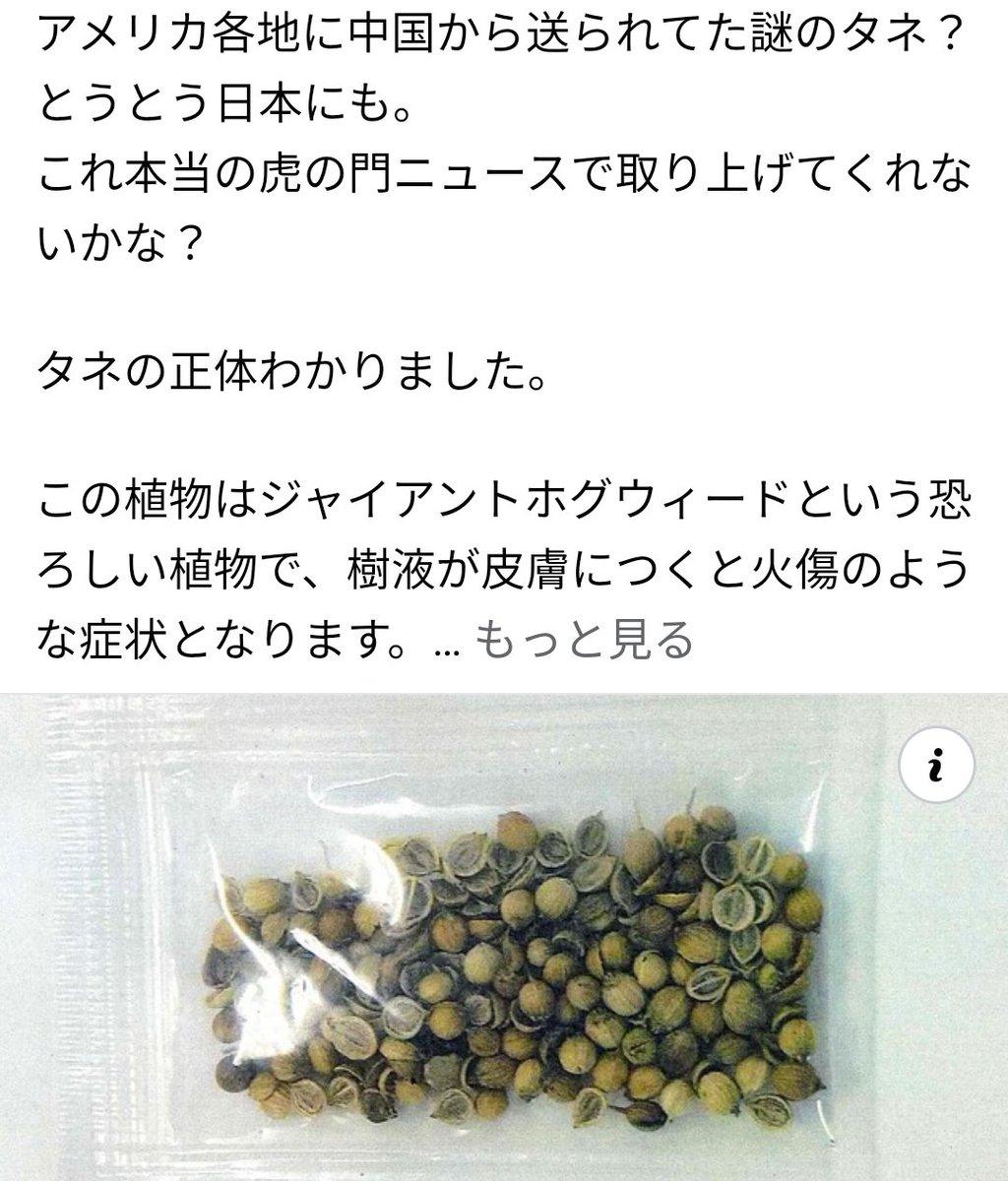 @media_otb 和田さん。中国から送りつけられる種の正体が、判明したらしいですよ。 https://t.co/USK9yvrQrc