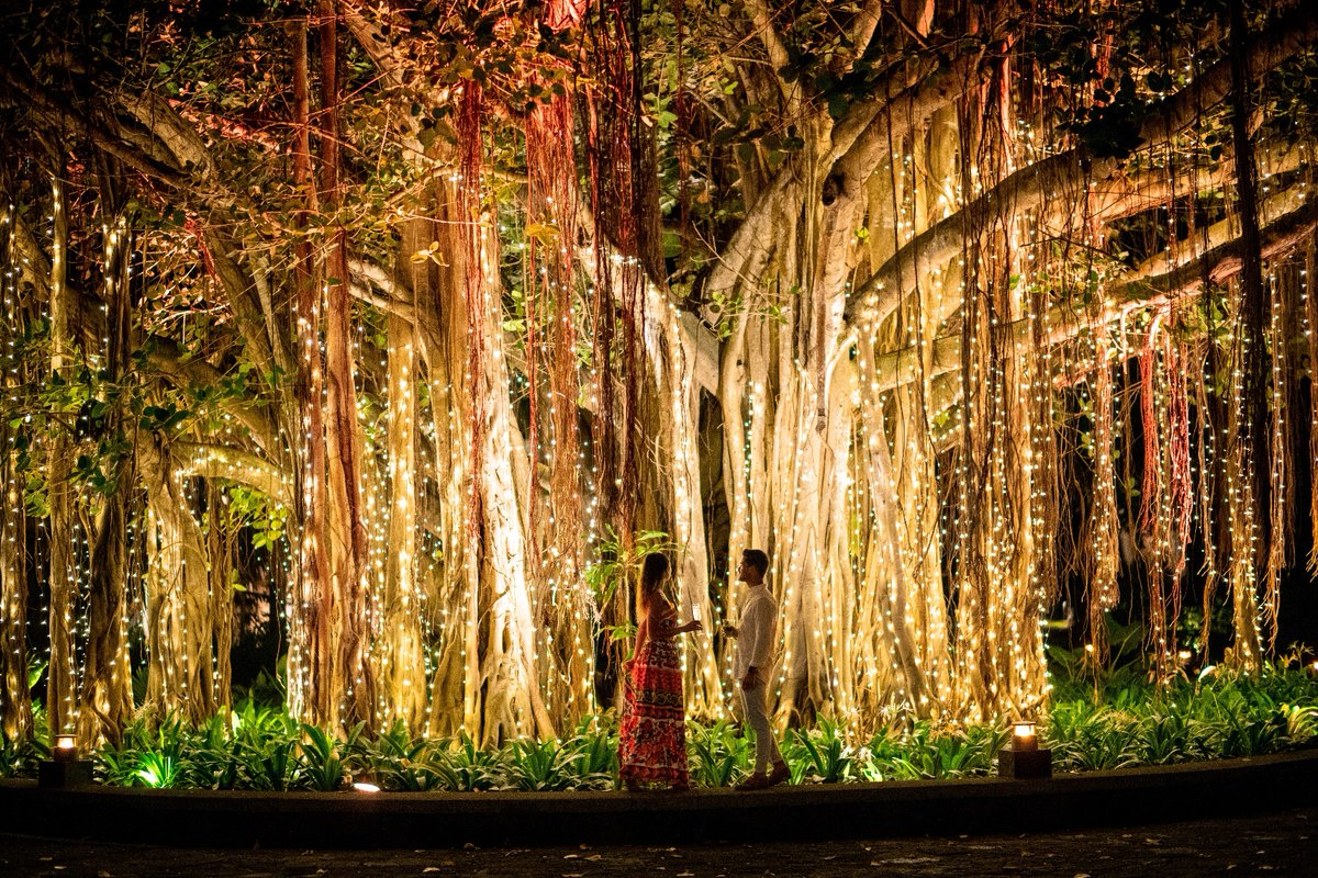 Make Mauritian memories as stunning as blossoming banyan trees.   #MyShangriLa https://t.co/N4VJ9iA1Mf
