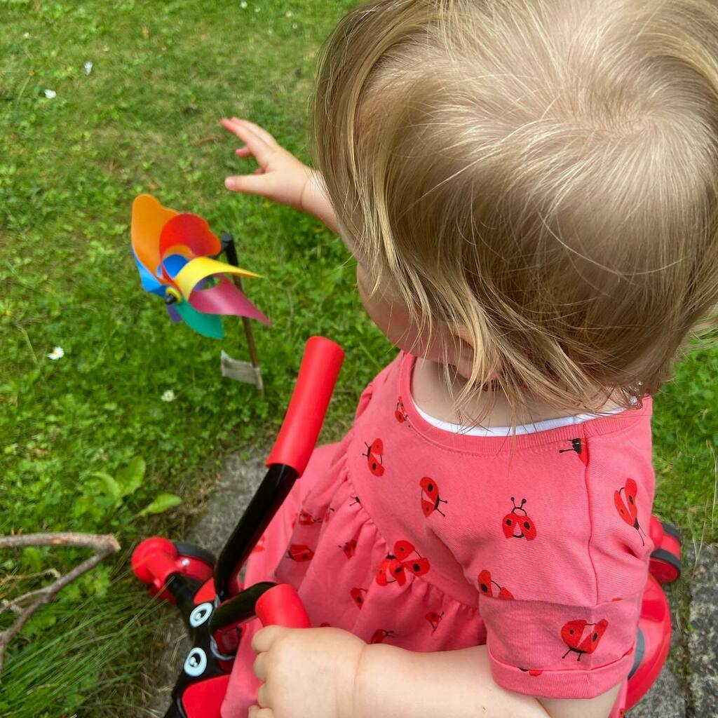 My little ladybird #garden #playtime #toddler #ayrshire #instamum #toddlerlife #summer https://instagr.am/p/CDWCw-vJB6Z/pic.twitter.com/8FZHgAhBm7