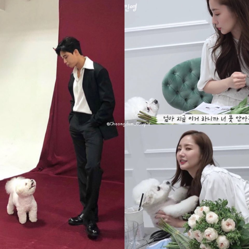🐶🐶  #ParkMinYoung #박민영 #박서준 #ParkSeoJoon #ParkParkCouple #2ParkCouple #CheongdamCouple #WhatsWrongWithSecretaryKim https://t.co/1tgl2vow8V