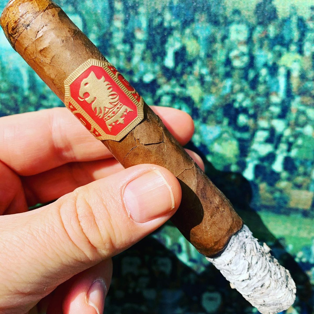 Undercrown Sungrown...grows on me the more I smoke itfrom @drewestatecigar   #cigar #cigars #botl #sotl #humidor #smoking #cigarlife #cigarlifestyle #cigarro #cigarians #pssita #cigarlover #cigarworld #cigarpic #cigarsocialclub #cigarlifeguy #nowsmoking  #cigarswagpic.twitter.com/fMVO9U1wWk