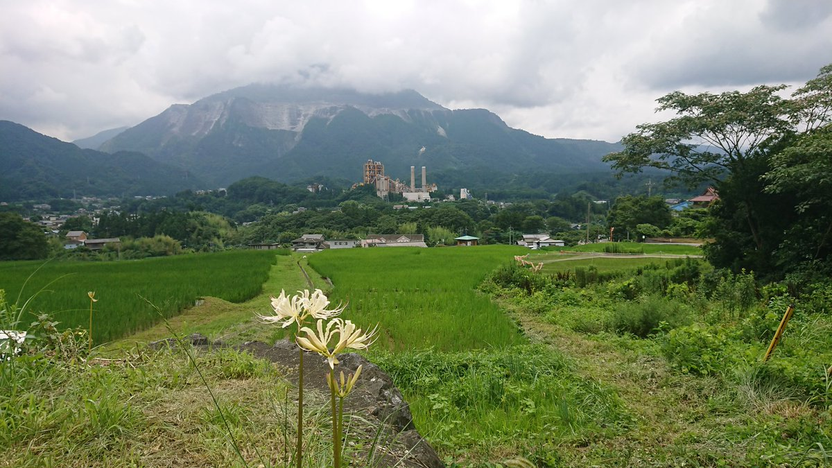IWASHI7777777 photo