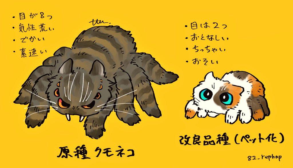 貓臉X蜘蛛 EeYaIENU4AETmBs