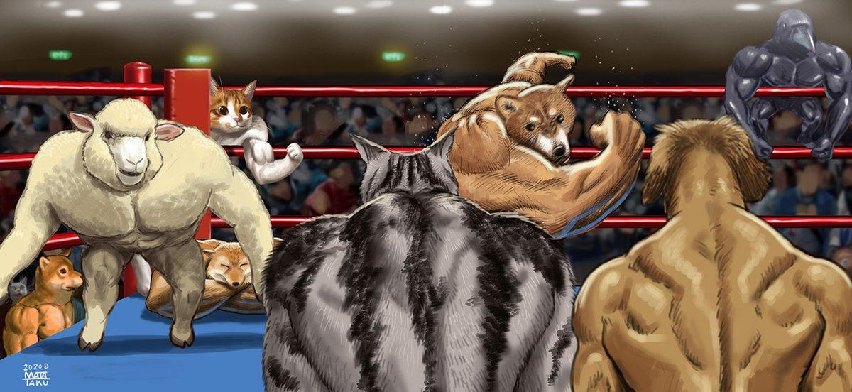ムキムキ犬の追加により戦況が変わってきました!!