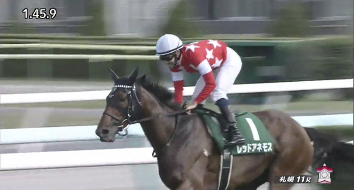 クイーンステークス(GIII)を優勝したのは、#レッドアネモス!  真夏の牝馬限定重賞を制す!これからの牝馬戦線もアツくなりそうだね!おめでとう!  #うまび #クイーンステークス https://t.co/xZCjfqLypK
