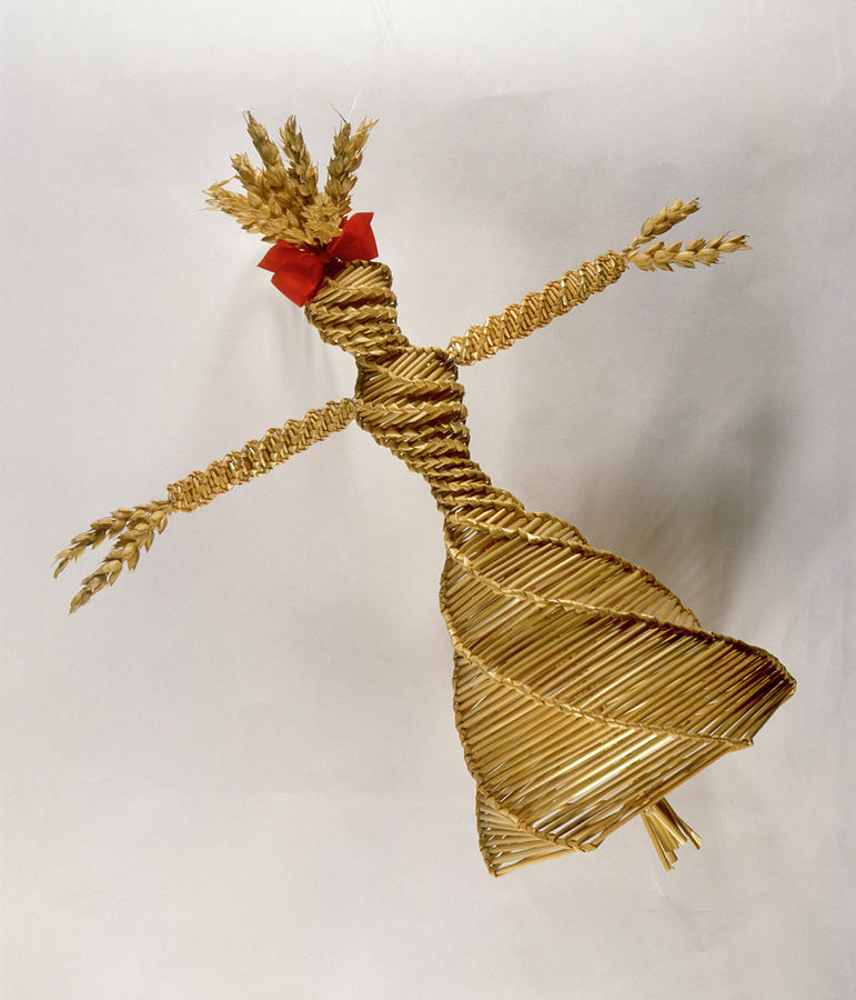 Corn dollies or corn mothers, straw female figures made as part of European harvest customs, connecting to ancient beliefs involving goddess worship, fertility and the earth. Dolls were kept until the following spring to ensure a good harvest (image- Mary Evans PL) #Lammas