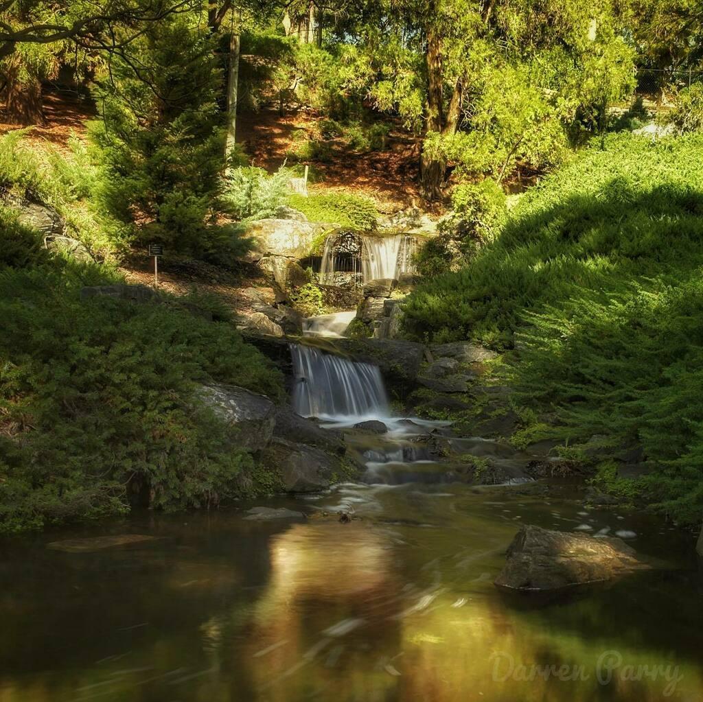 Mt Cootha Botanical Gardens. . . #brisbaneanyday #nikon #thisisqueensland #loveyouqueensland #river #waterfall #rainforest #nature #water #clouds #d5600 #nikonphotography #ig_australia #ig_captures_landscape #mountain #waterfalls #ozshotmag #nikon_dslr_u… https://instagr.am/p/CDYNXb7Ak_h/pic.twitter.com/jXNpPQIuxa