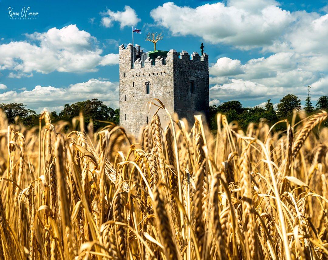 Another gorgeous weekend Ireland ☘️🏖 Belvelly Castle , Cobh . Ireland #Ireland #Castle #StormHour #ThePhotoHour #Island #Cruise https://t.co/4iOMU7tdRx