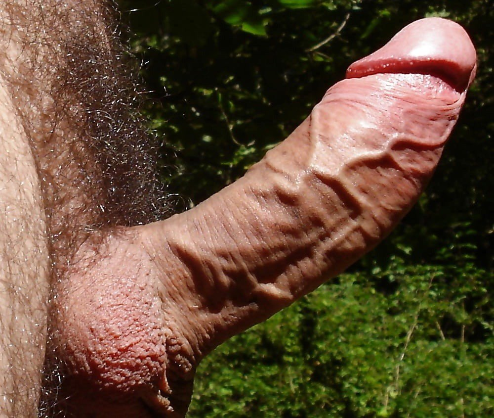 Somebody Rate My Big Uncut Cock