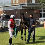 NOMADIC EMPIRE makes it a double for Al Moahediya racing on the day. Well done @omeararacing and Danny Tudhope