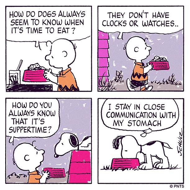 Dogs always seem to know…