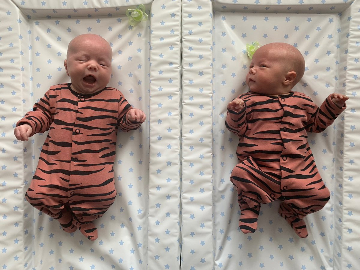 5 weeks today!  #twins pic.twitter.com/CyIF75qSQV