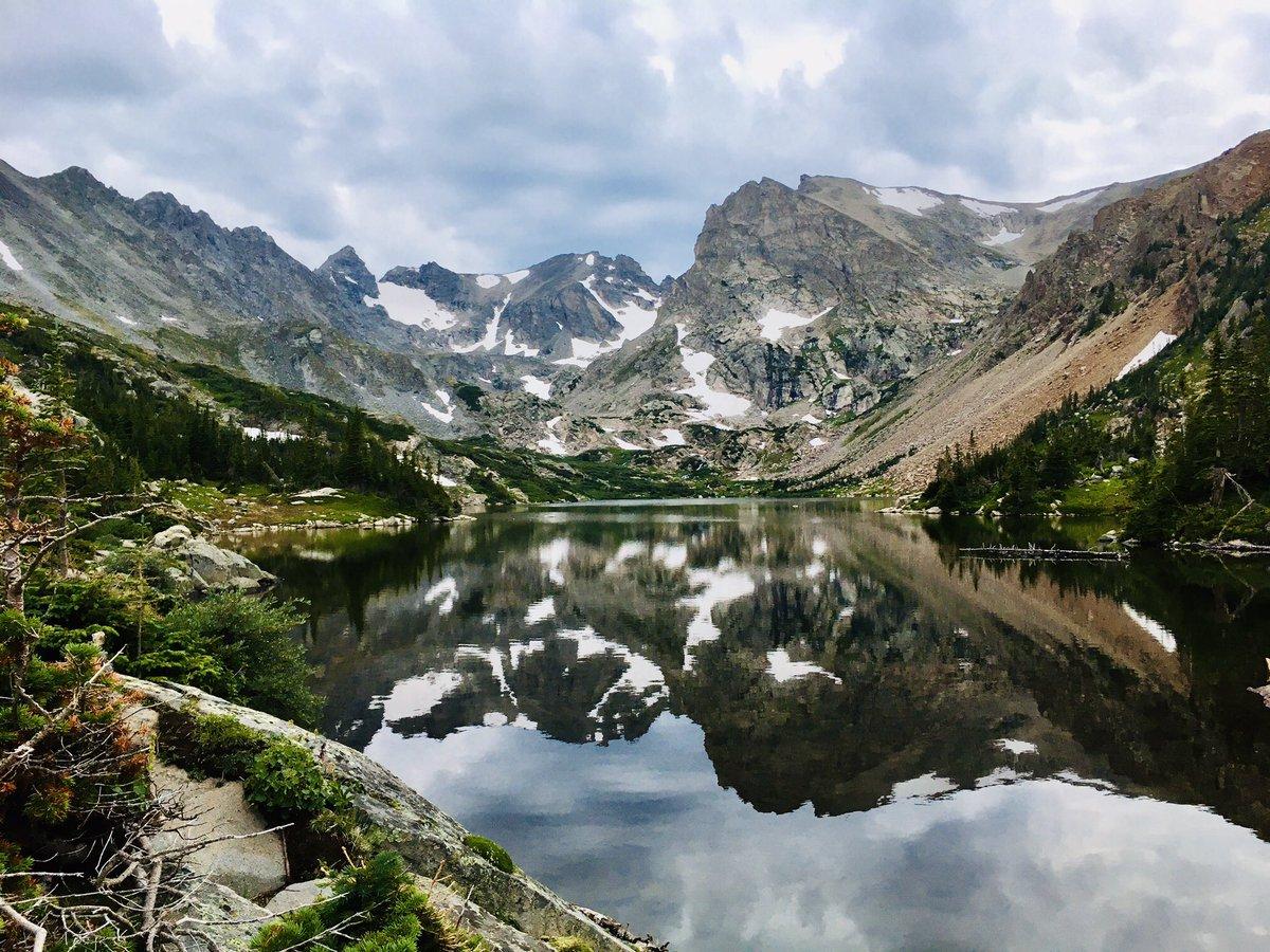 Bull moose & alpine lakes makes for a gorgeous #colorado.  pic.twitter.com/GJHQCxmQlj