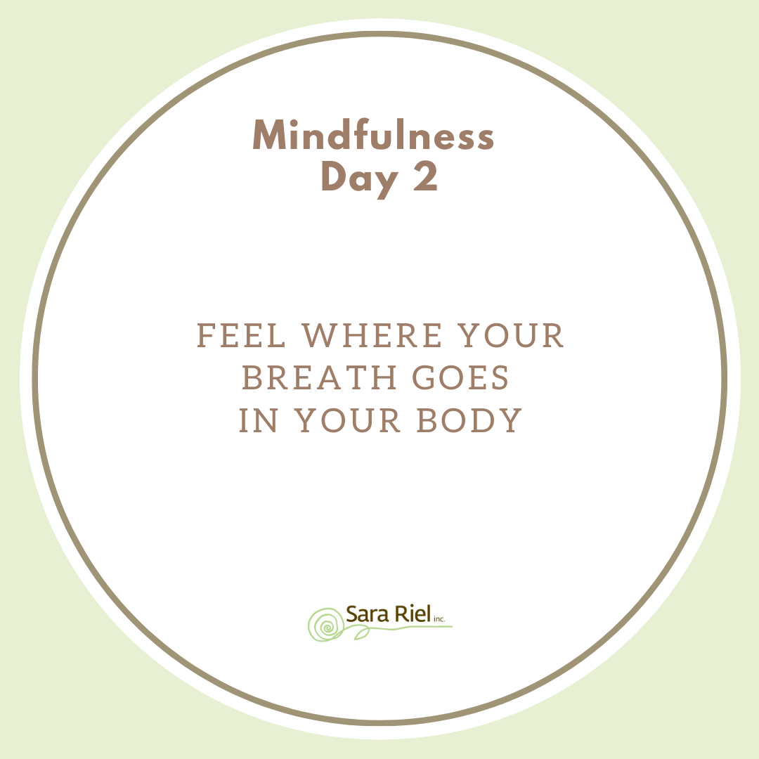 Breath in as deep as you can.  Nice and slow. How deep did your breath go? Try again, did it go anywhere else in your body? Try and navigate your breath to reach every part of your body.    How do you feel?  #mindfulness #mindfulnessmatters #mentalhealth #mentalhealthactivitypic.twitter.com/XCeyRDPHuz