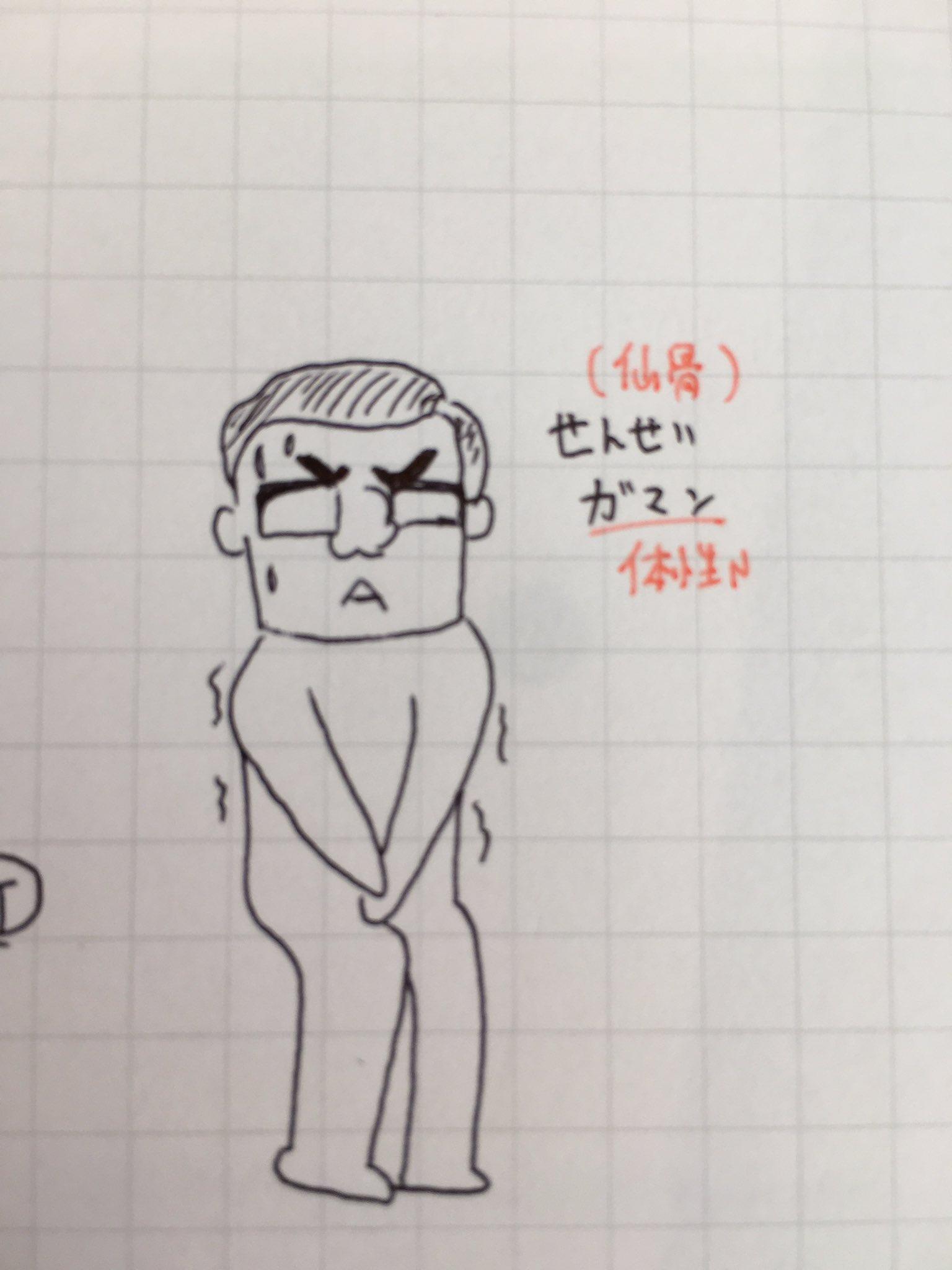 叢 仙骨 神経