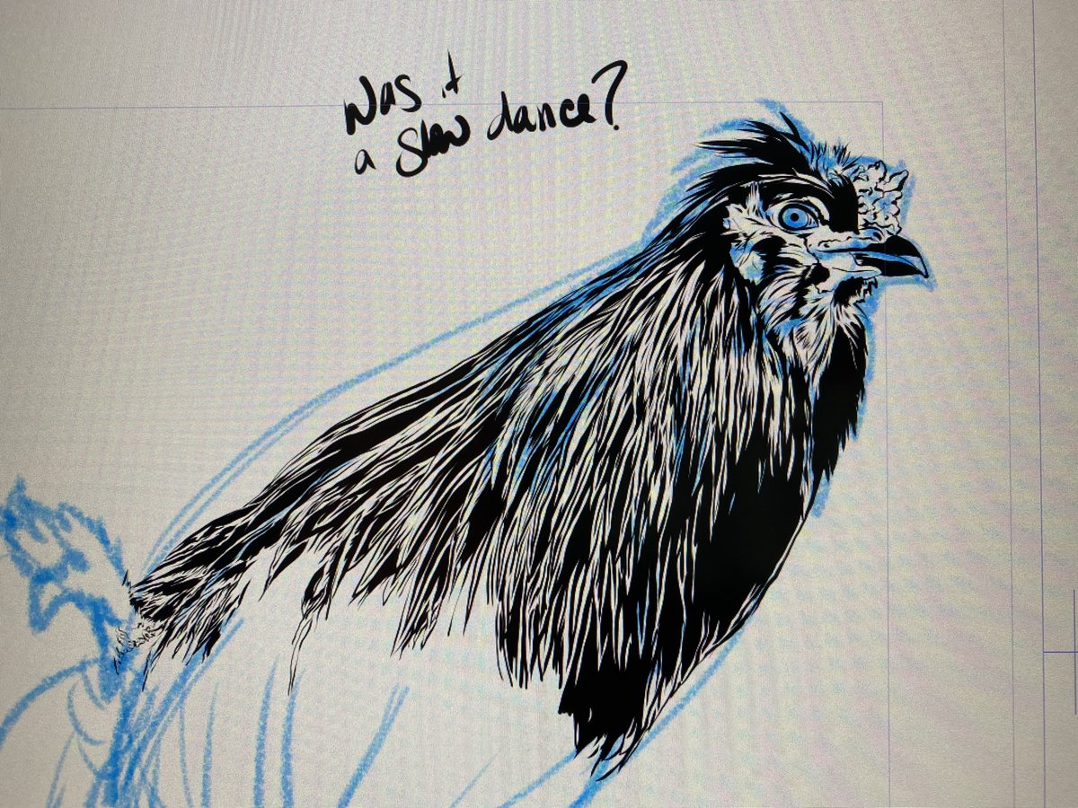 "Always called Mumbles my ""monster rooster"" because he was all muscle and rooster hackle feathers (I think the only rounded feather he had were on his wings). #art #wip #digitalillustration #clipstudiopaint #animalillustration #birdillustration #disabledartist #coloradoartist pic.twitter.com/wg4ZszIq9n"
