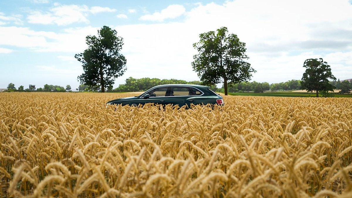 Bentley Bentayga off-road luxury.... @BentleyMotors #forzahorizon4 #forzashare #gamingphotography #makeforzalookreal #virtualphotographer #forzaportugal #xbox #offroad #luxurylifestyle #forzaphotos #forzaportugalpic.twitter.com/ejj5rXyBct